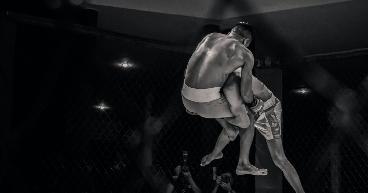 A Look at the Contenders for Ultimate Fighting Championship 255